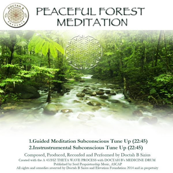 DOCTAH B'S PEACEFUL FOREST MEDITATION (Audio download ...